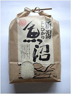 画像1: 新潟魚沼産こしひかり 5kg (有限会社農園ビギン)